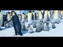 Марийский танец пингвинов))))